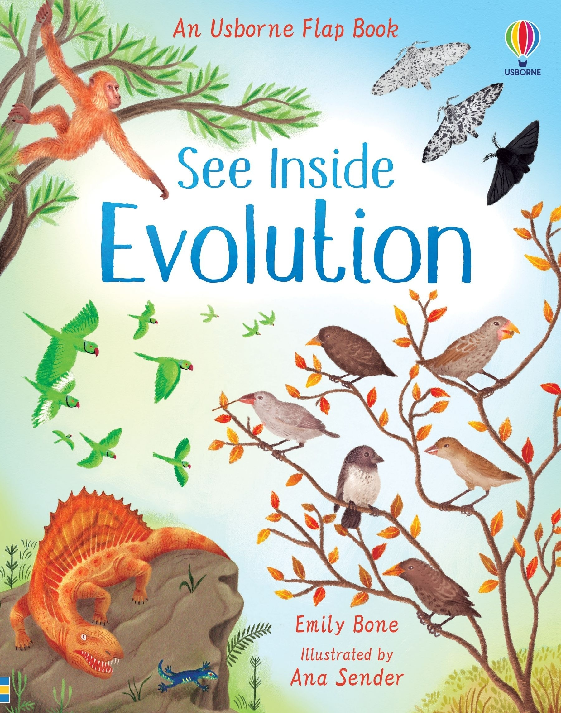 See Inside Evolution
